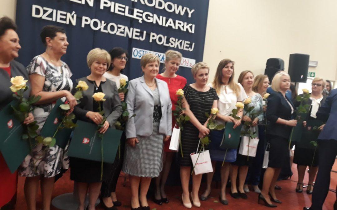 Powstanie nowy wydział pielęgniarstwa w Ostrołęce